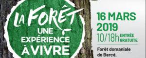 Journée International de la Forêt 2019